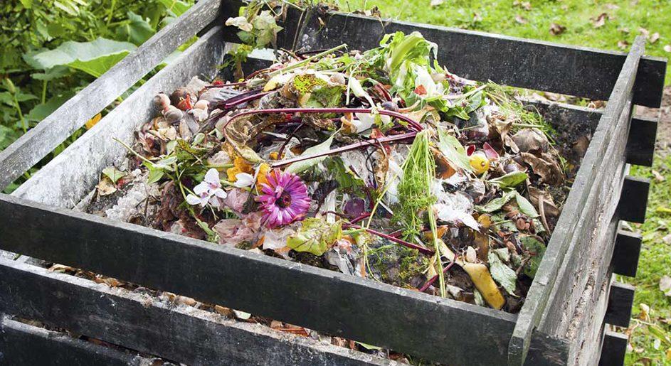 Cómo realizar compost en casa