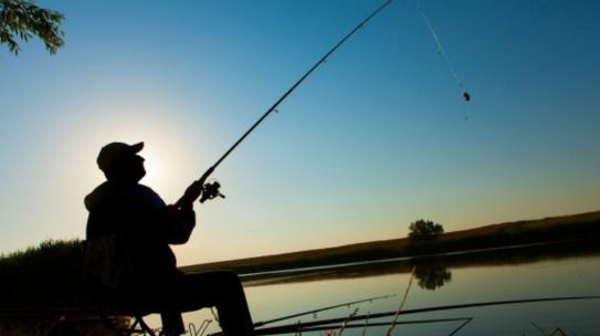 Cómo tramitar permisos oficiales para la pesca deportiva habilitada
